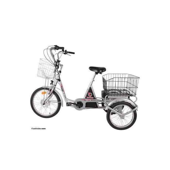 Quel tricycle électrique choisir ?